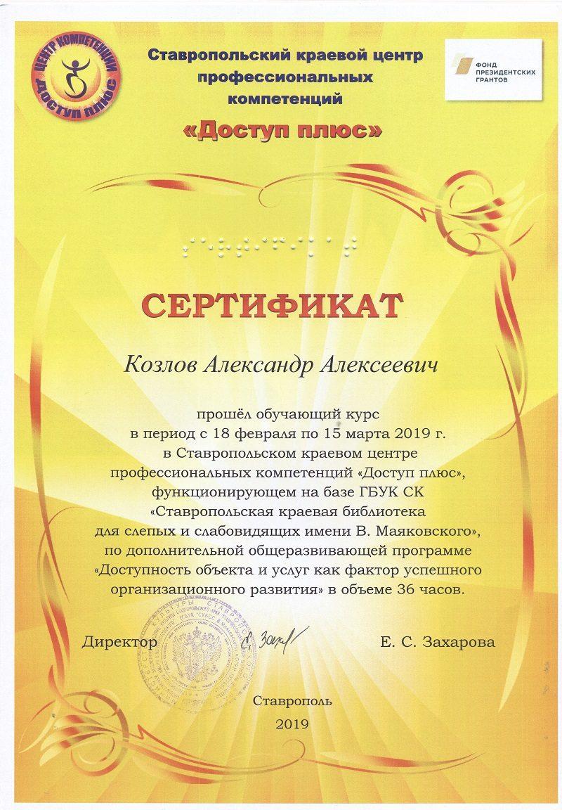 Сертификат: Доступность объекта и услуг как фактор успешного организационного развития. 2019 г.